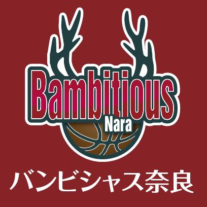 奈良のプロバスケットボールチーム